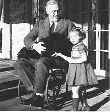 Roosevelt in wheel chair